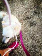 my baby runs!